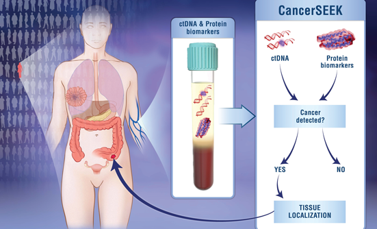 New Blood Test Screens for 8 Types of Cancer and 16 Genomic Mutations