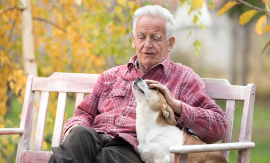 Are Patients with Cancer Safe Around Pets?